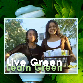 livegreenlearngreen